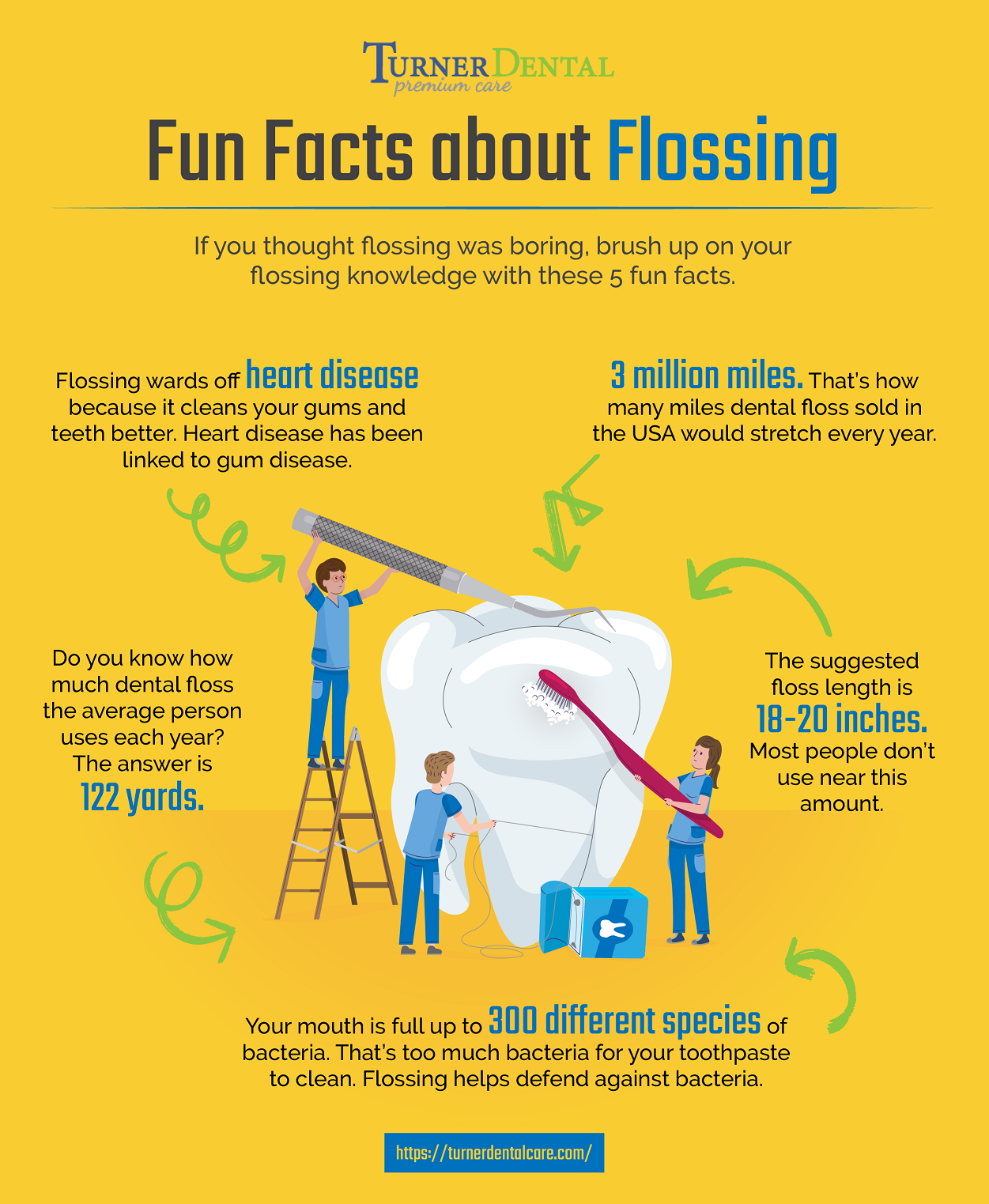 How Much Do You Know About Flossing?